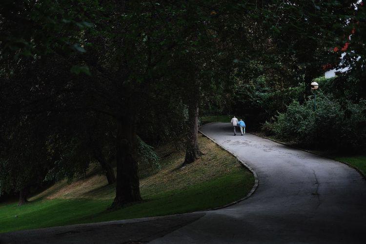 Rear View Of People Walking On Narrow Road Along Trees