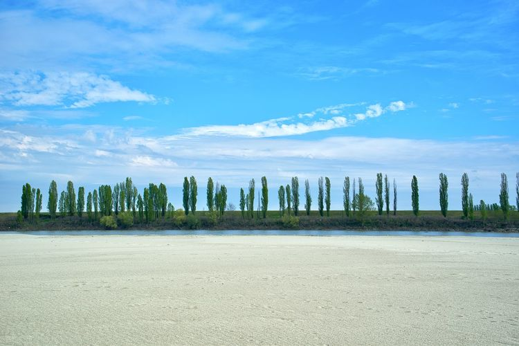 Italy, Mantova: countryside along river Po Daylight Day Time Cloud, Cloudy Sky Sand Bank Sand Horizontal Environment Non-urban Scene Tree Line Treelined From A Distance Land Cloud - Sky Beauty In Nature Beach Water Scenics - Nature Nature Tranquil Scene Blue Tranquility Day No People Tree Sea Plant Outdoors Landscape Wooden Post Relaxing Relax Outdoor Photography
