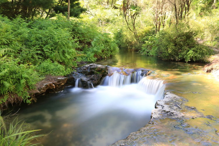 EyeEmNewHere Beauty In Nature Canon Canonphotography Cengizhankarabel Day Flowing Water Forest Growth Karabeladventures Karabelphotography Long Exposure Motion Nature No People Outdoors River Rock - Object Scenics Tranquil Scene Tranquility Tree Water Waterfall first eyeem photo Be. Ready.