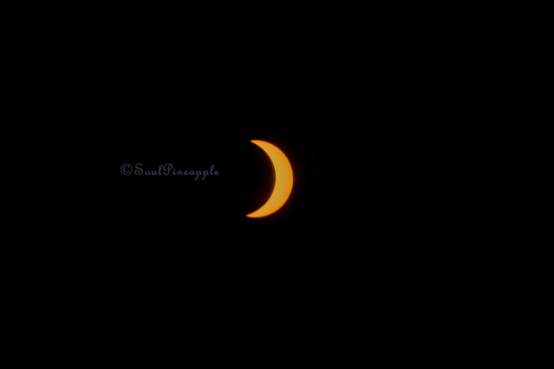 Solar Eclipse Over California Astronomy Sun Outdoors Nature Sky EyeAmNewHere Planetary Moon Solar System Moon Solar Eclipse 2017 Atwater Central Valley, California Beauty In Nature Close-up No People Night Indoors  EyeEmNewHere