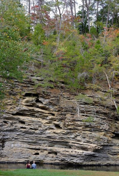Lost In The Landscape Tree Nature Water Real People Day Outdoors Tranquility Beauty In Nature Growth Cliff Rock Formation Fall Creek Falls Tennessee Travel Destinations Scenics Two People Sky People