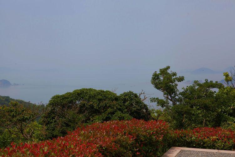 VSCO Sea And Sky Shengsi My City