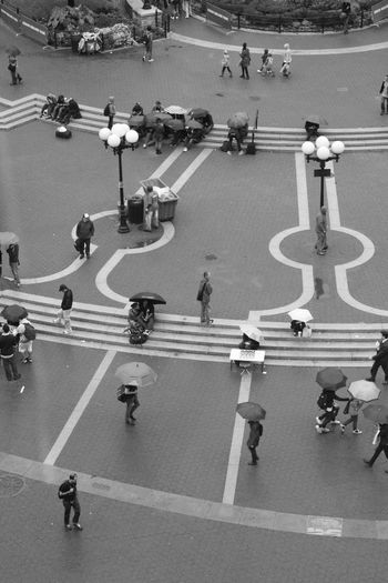 High angle view of people walking with umbrellas on road