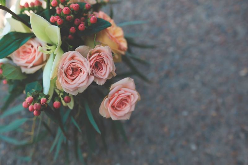 Spring bouquet 💐 Flower Fragility Beauty In Nature Nature Petal Plant Freshness Rose - Flower Growth Flower Head Blooming No People Outdoors Close-up Day Bouquet