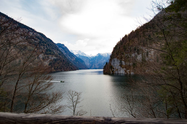 Lake Tree Landscape Snow Water Mountain Beauty In Nature Outdoors No People Sky Day Königssee, Bavaria, Mountain Lake, The Alps Königssee Berchtesgaden, Germany