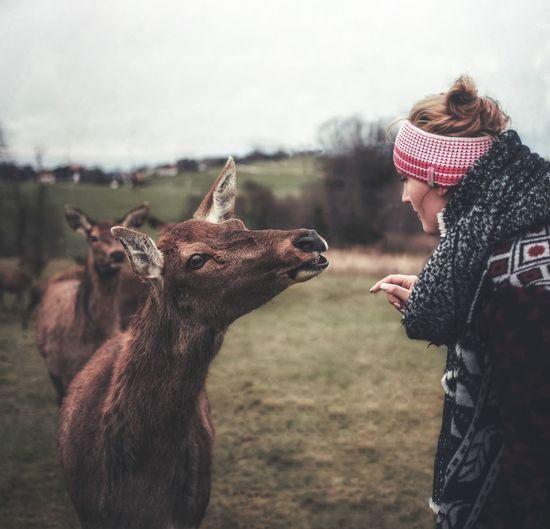 Woman looking at deer on field against sky