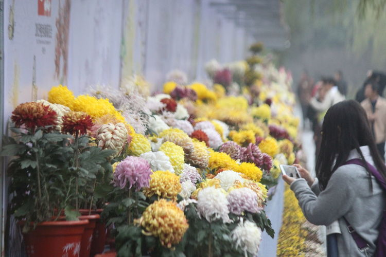 Flowers in market