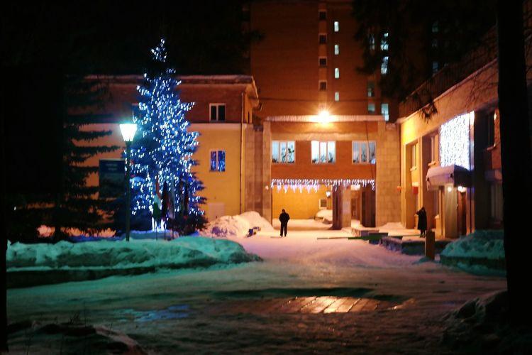 Стареющий новый год Street Streetphotography Russia Snow ❄ Siberia Trees Night Lights
