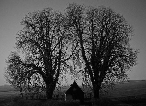 Blackandwhite Chapel EyeEm Nature Lover From My Point Of View Landscape Landscape_Collection Monochrome Morning Light