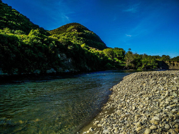 Green Lower Hutt River River View Tranquil Scene Tranquility