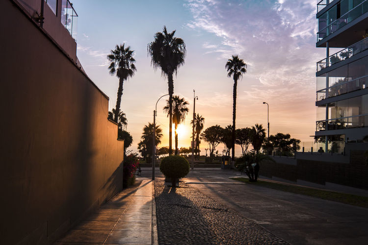 Beautiful sunset view with majestic palm trees. City Cloudscape Lima Orange Orange Sky Palms Silhouette Architecture Building Exterior City Footpath Orange Color Outdoors Palm Tree Sky Street Sunlight Sunset Sunset #sun #clouds #skylovers #sky #nature #beautifulinnature #naturalbeauty #photography #landscape The Way Forward Tree Tropical Climate