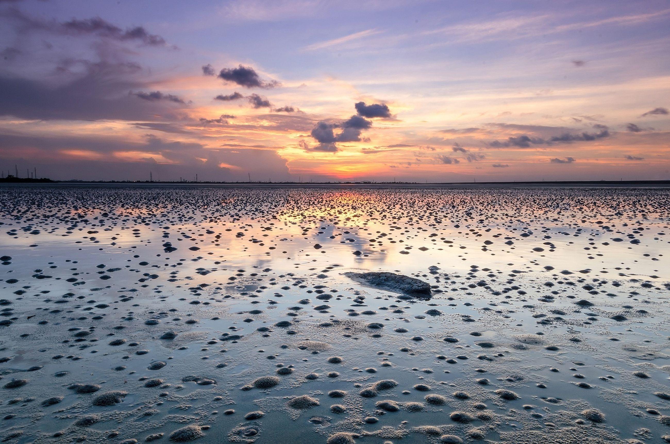 water, sunset, sea, bird, sky, animal themes, horizon over water, animals in the wild, tranquil scene, scenics, wildlife, beauty in nature, beach, tranquility, cloud - sky, nature, flock of birds, idyllic, shore