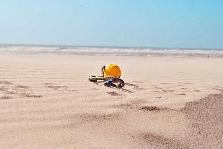 Dogtoy Beach