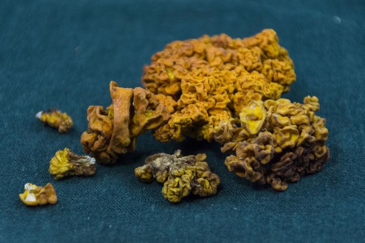 High angle view of yellow mushroom on table