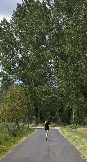 Rear view of woman walking on road amidst trees