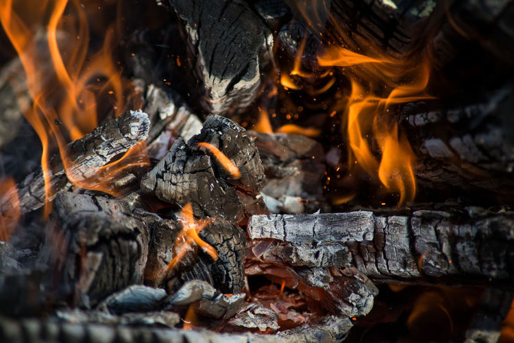 Close-up of bonfire on log