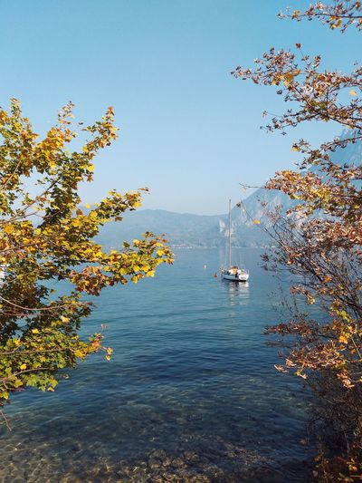 Water Boat Sky Blue Lake View Tree Autumn Autumn🍁🍁🍁 Autumn colors Lake Tree Sea Flying Astrology Sign Sky Horizon Over Water Wave Surf Coast Calm Autumn Mood