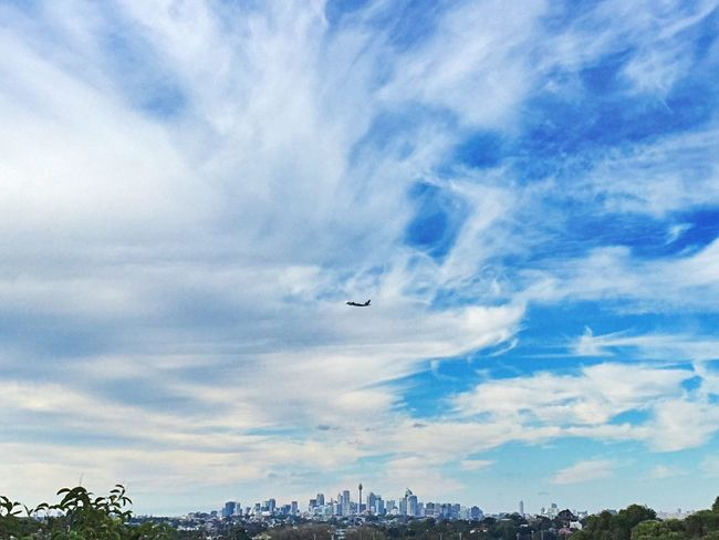 • Tiny City of Sydney • Open Edit City FAR AWAY Distance Eye4photography  Tower The Traveler - 2015 EyeEm Awards The Great Outdoors - 2015 EyeEm Awards From My Point Of View