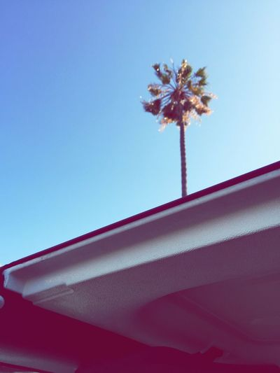 Looking Up Hello World On My Way Home California Love Blue Sky