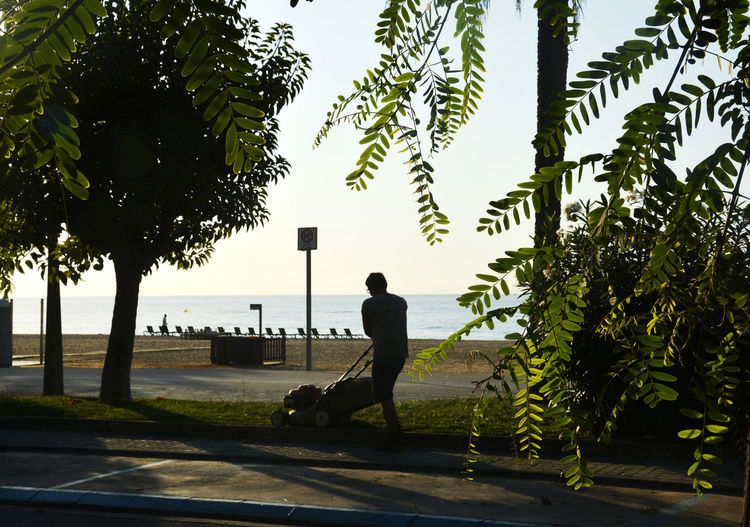 Silhouette man cutting grass with lawn mower at park