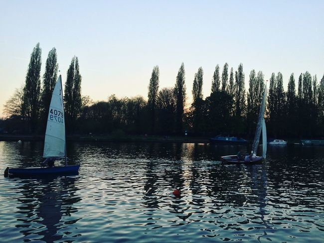 Sailing boats at sunset British Kingston Kingston Upon Thames London Reflection Surrey Boat England Nature Outdoors River Sail Sailing Sky Summer Sunset Tree Uk Water Waterfront First Eyeem Photo
