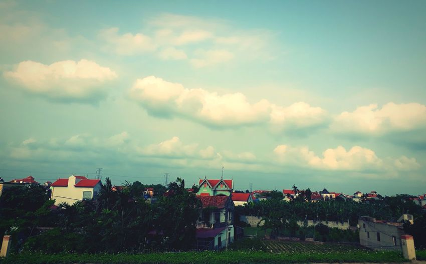 Houses and trees against sky in city