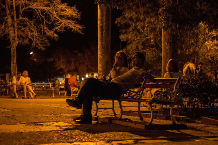 Chair Disconnected Group Of People Illuminated Internet Internet Connection Internet Point Leisure Activity Mammal Men Nature Night Outdoors People Real People Togetherness Tree Women