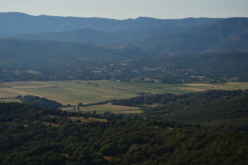 Scenic view of agricultural field and mountains