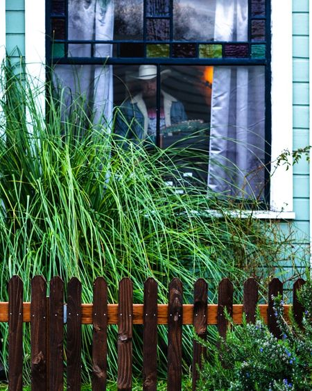 Trimp in the window Window Fence Man With Hat Architecture Building Exterior Built Structure Plant