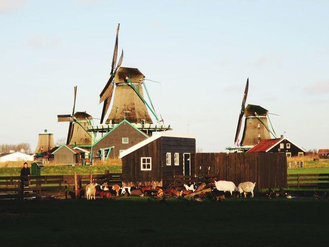 Your Amsterdam Amsterdamcity Iloveamsterdam Countryside Amsterdam The Architect - 2016 EyeEm Awards The 2016 EyeEm Awards