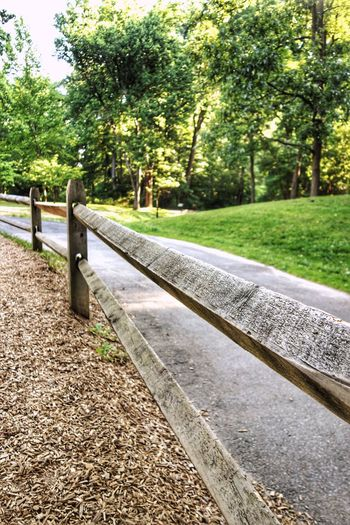 Long and winding road. Tree Nature Day Outdoors No People Grass Beauty In Nature Close-up Curved Lines Curved Path Curved Road Winding Road Path Pathway Road Summer Park - Man Made Space Wooded Area Trees Fence Fencepost Split Rail Fence The Great Outdoors - 2017 EyeEm Awards Marylandisforcrabs🦀