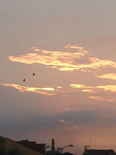 Journey together, be faithful to each other. Morning Life Sunrise Sky Birds Greatness Of God