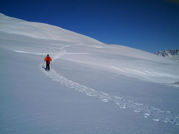 Gohigher Skitour Auf Den Glattwang