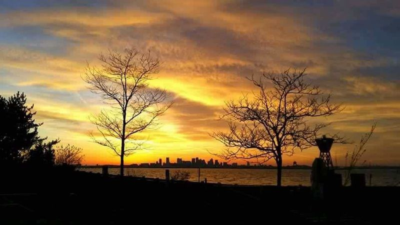 Sunset Cloud - Sky Sky Silhouette Boston, Massachusetts Deer Island Beauty In Nature Nature Tranquil Scene Outdoors Dramatic Sky No People Scenics Tree boston harbor