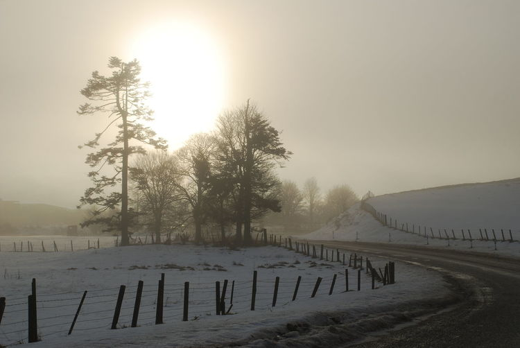 Beauty In Nature Cemetery Cold Temperature Day Fog Landscape Misty Cold Mountain Nature No People Outdoors Road Into Village Rural Scene Scenics Sky Snow Tranquil Scene Tranquility Tree Weather Winter Wooden Post