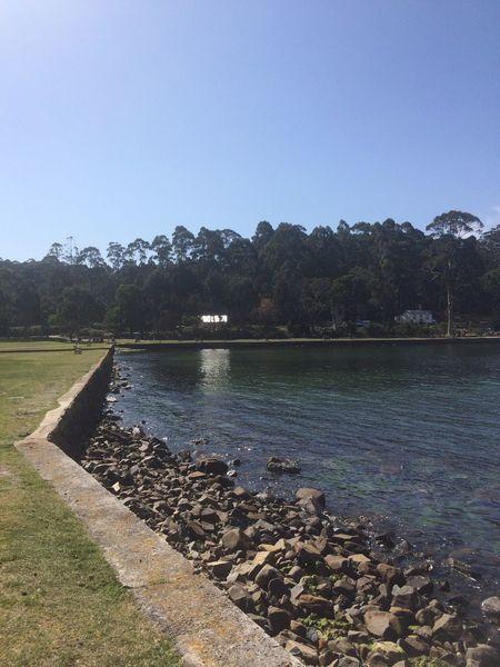 Port Arthur, Tasmania Water Tree Nature Outdoors Port Arthur Tasmania Australia & Travel Perspectives On Nature