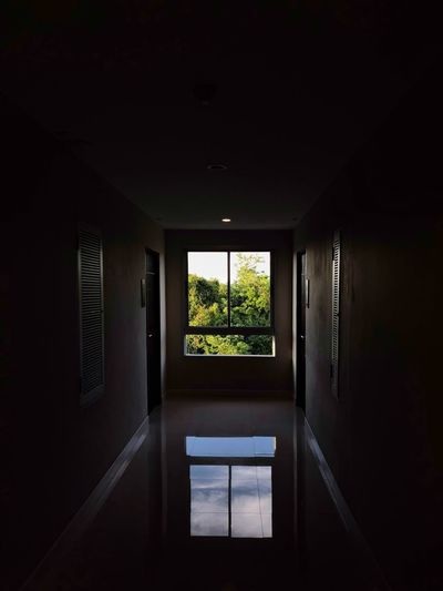 A window of natural in the end of corridor. Window Architecture Indoors  No People Dark Day Built Structure Building Glass - Material Nature Illuminated Wall - Building Feature Domestic Room Plant Tree Reflection Sunlight Ceiling