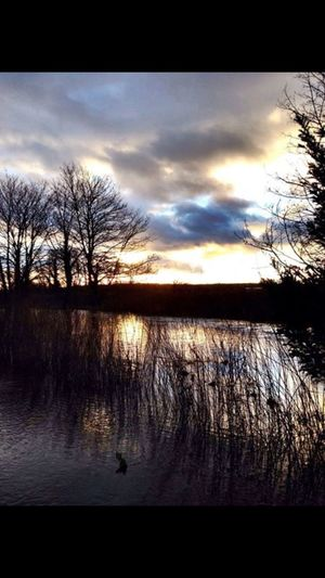 Old IPhone Photography Countryside Flooded Village Flooded Land Outside Photography Water Floods Reflections Reflections In The Water Trees And Reflections Trees And Water Rivers Wiltshire UK Beautiful Nature The Moot Nature