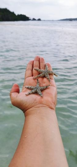 Midsection of a man holding a starfish