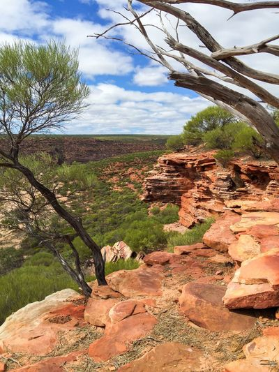 Edges Land Scenics Peaceful View Elevated View Landscape_Collection Connected With Nature Red Rock Valley Rock Gorge Nature Geological Kalbarri Hiking Nature Photography Sandstone Travel Photography The Great Outdoors With Adobe Nature's Design Australia Western Australia Plants 🌱 Landscape Layered Rock Nature Textures
