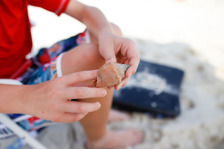 Child Holding Shell While Sitting on the Beach in the Summertime Human Hand Hand Child One Person Childhood Human Body Part Focus On Foreground Close-up Real People Beach Selective Focus Day Outdoors Lifestyles Boy Summer Shell Sand Boogie Board Bathing Suit  Leisure Activity Vacations Summer Vacation Destin, FL Sandy Beach