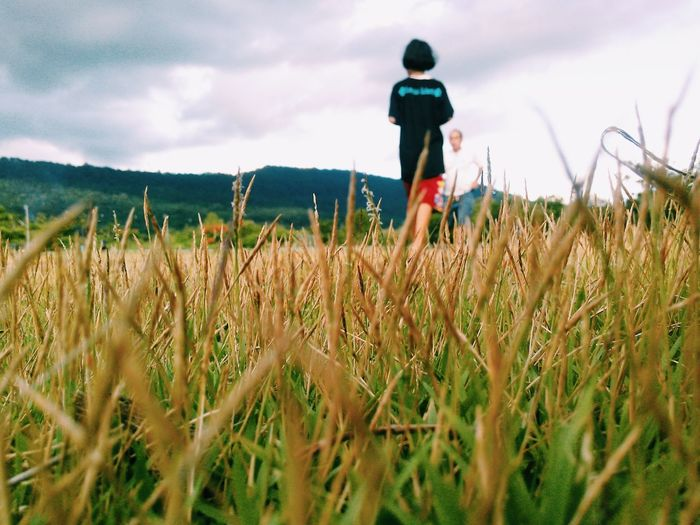 Field Walk Child Nature