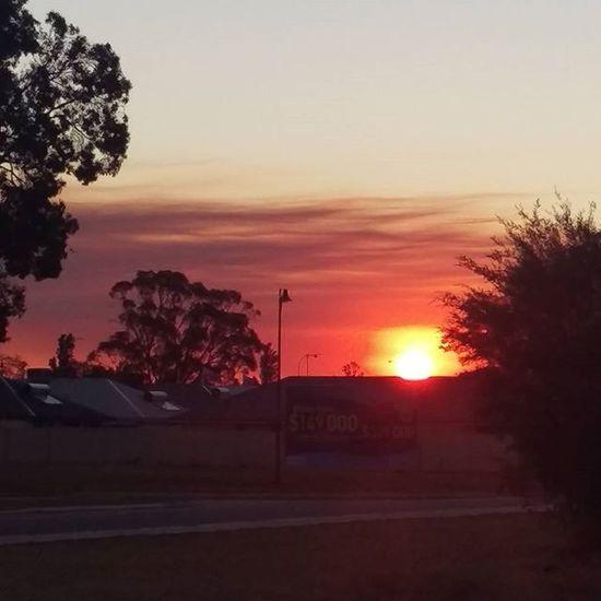 Smokysunset Aftermath Fires