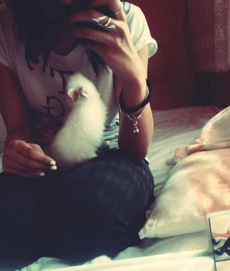 Taking Photos Withmybunny Bunny 🐰 Love ♥ Lovehim Mirror Picture Cute Pets Cute Lovely 💞