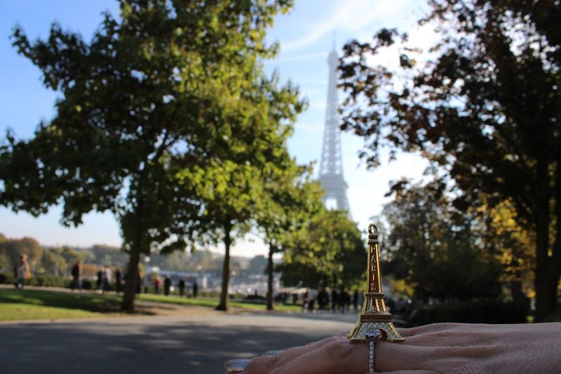 🇫🇷 Paris Tour Eiffel Tree One Person Real People Holding Focus On Foreground Music Human Hand Musical Instrument Day Outdoors Men Playing Close-up Human Body Part People Adults Only Sky One Man Only Adult Only Men Focus Object EyeEmNewHere