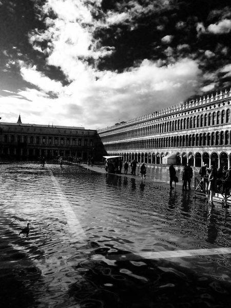 Venezia Venice Venice, Italy Italia Venedig Venice, ıtaly San Marco Square Piazza San Marco Acqua Alta San Marco Black And White Water