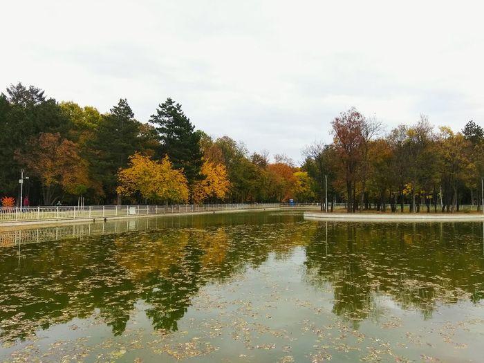 Sity lake