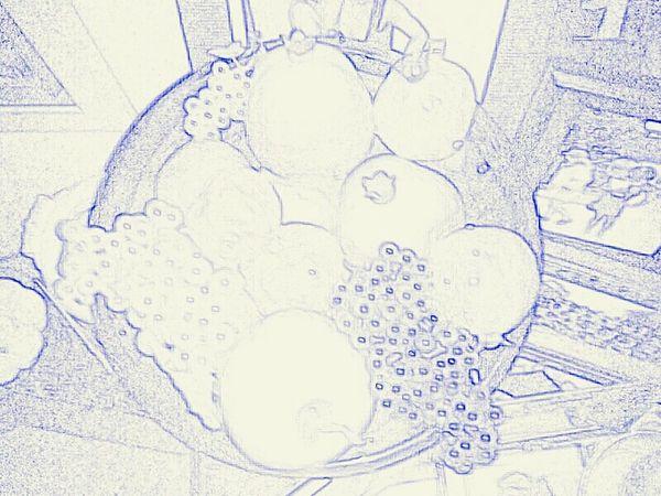 2015  Photography Paulette Sketching Fruit Bowl