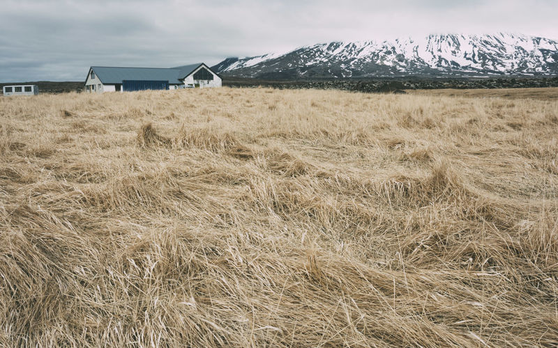 Grass Iceland Iceland Memories Iceland_collection Landscape Mountain No People Outdoors Rural Scene Scenics Tranquil Scene Tranquility The Great Outdoors - 2016 EyeEm Awards