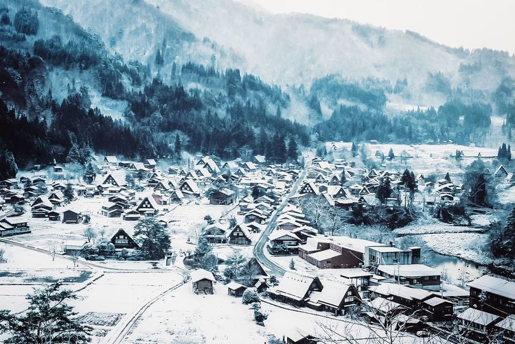 Aerial view of snow covered trees and buildings